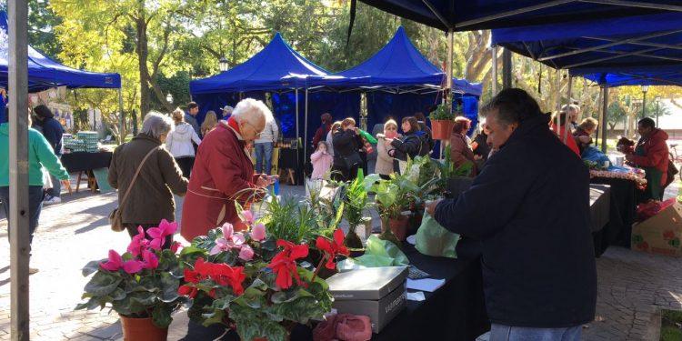Mañana se realiza el Mercado Popular Itinerante en Plaza Mitre