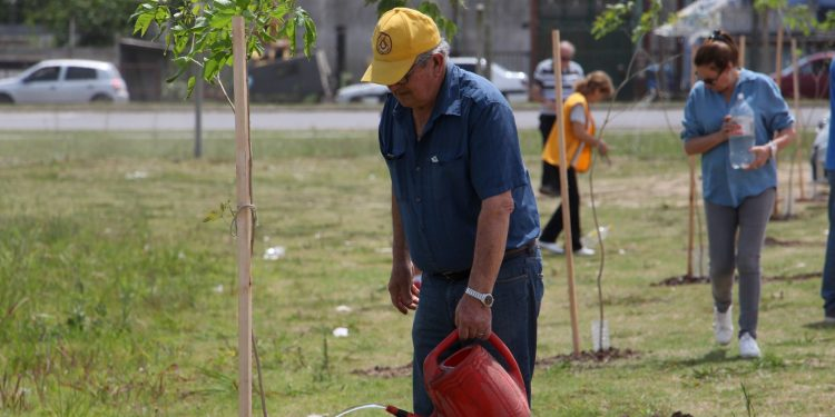 Municipio y Club de Leones plantan árboles en el predio del Hospital Intermedio Municipal