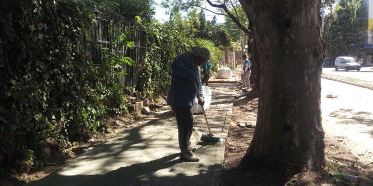 Comenzó la construcción de veredas en la avenida Mitre