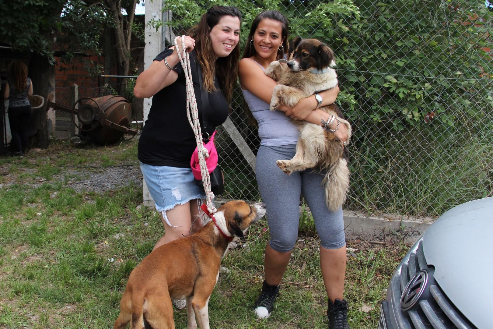 Fueron adoptados todos los perros por vecinas proteccionistas