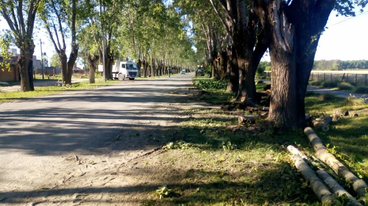 El Municipio trabajó en la reparación de varias áreas de Lima que fueron dañadas por el temporal del sábado último